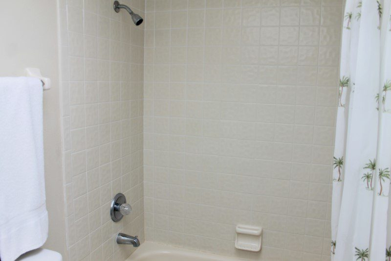 Guest Tub And Shower (Custom)