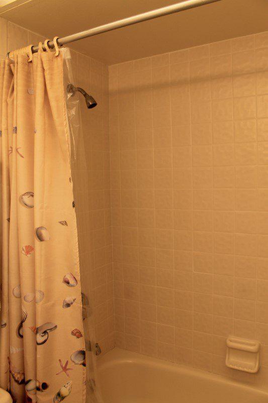 Hall Bath Tub And Shower (Custom)