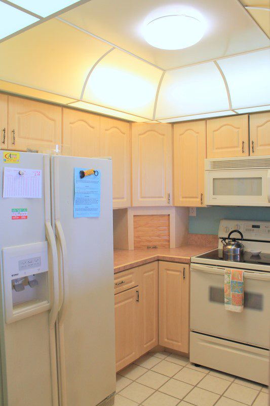 Kitchen Refrigerator (Custom)