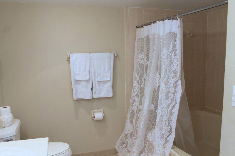 Master Shower And Tub (Custom)