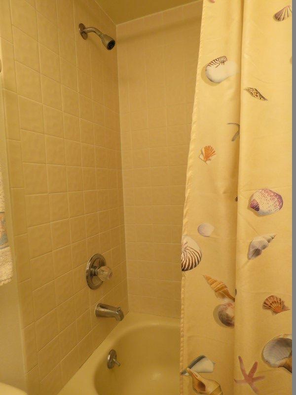 Hall Shower (Custom)