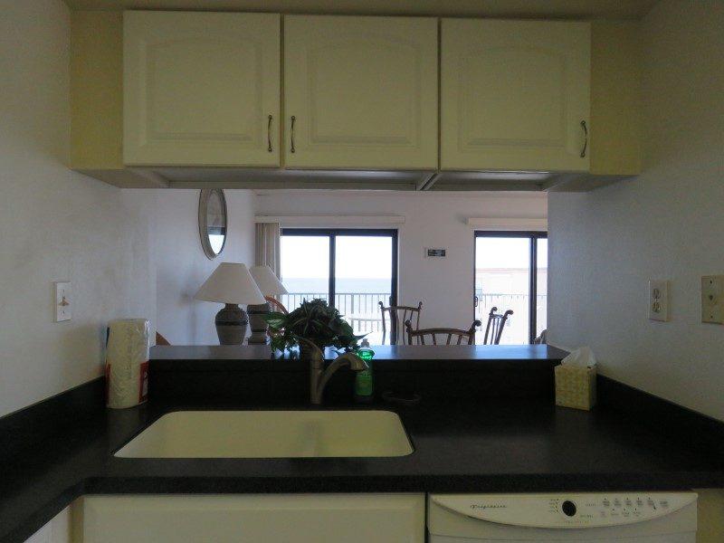 Kitchen Sink View (Custom)